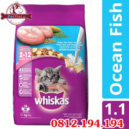 Whiskas Junior Ocean Fish gói 1,1kg